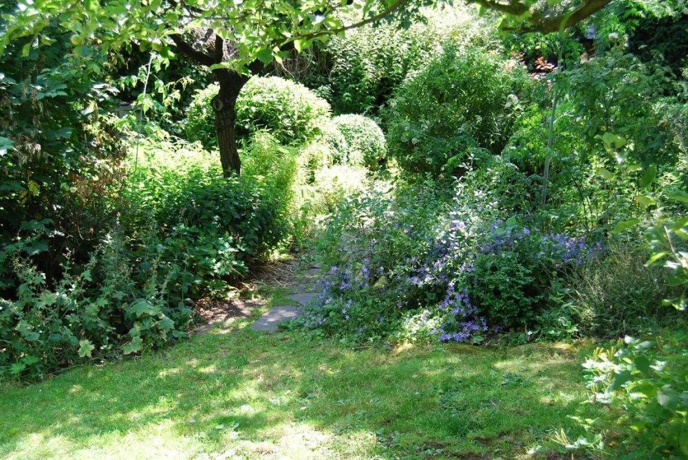 harleyford-road-community-garden